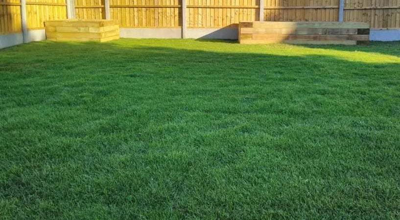 Oilcanfinish Landscaping Garden Lawn Turf Laying Wimbledon